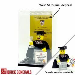 Custom minifig NUS Graduate in Display Box