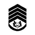 Senior / Chief Warrant Officer